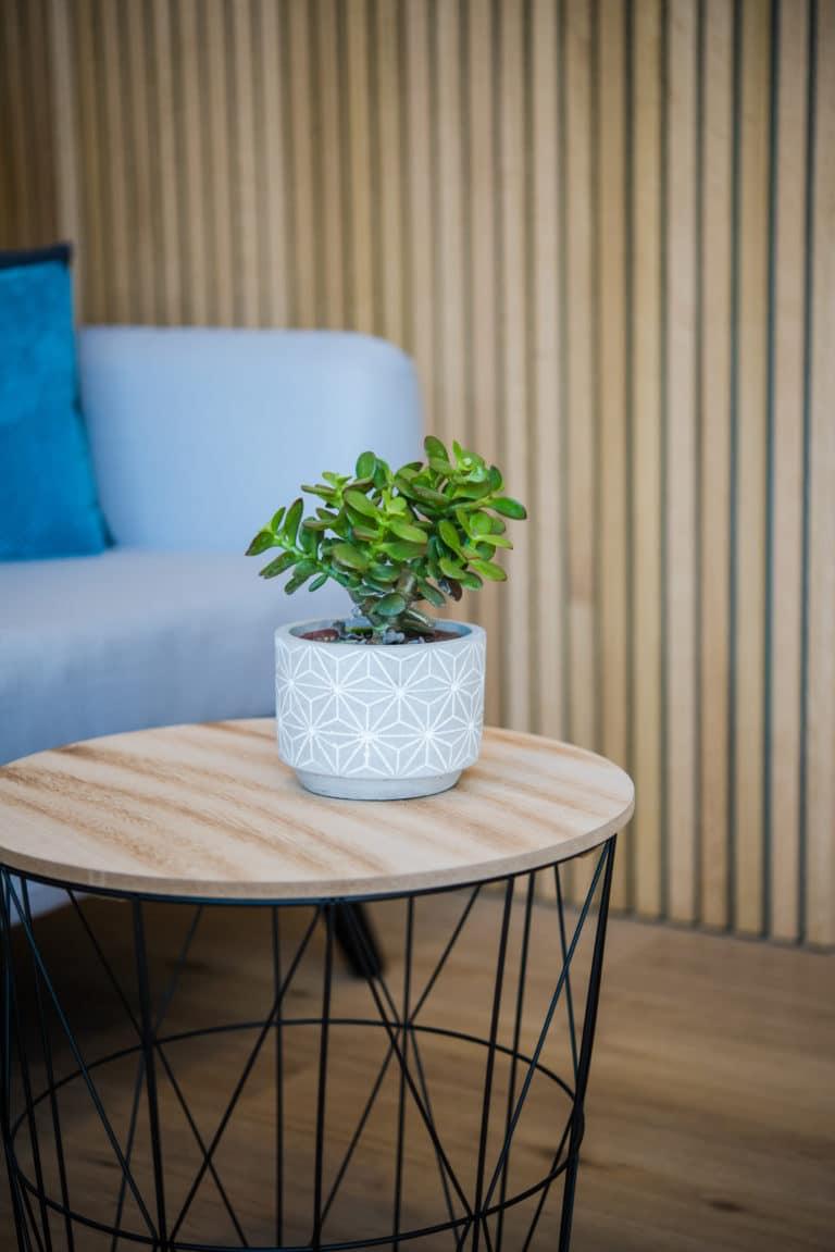 Table et pot de fleur dans l'espace d'attente du salon